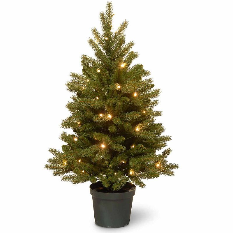 National Tree Co. 3 Foot Jersey Frasier Fir Entrance Potted Pre-Lit  Christmas Tree - National Tree Co. 3 Foot Jersey Frasier Fir Entrance Potted Pre-Lit