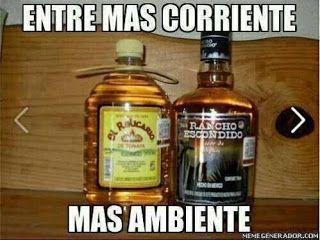 Hola Meme Borrachos 2 Meme Gold Peak Tea Bottle Tea Bottle Jack Daniels Whiskey Bottle
