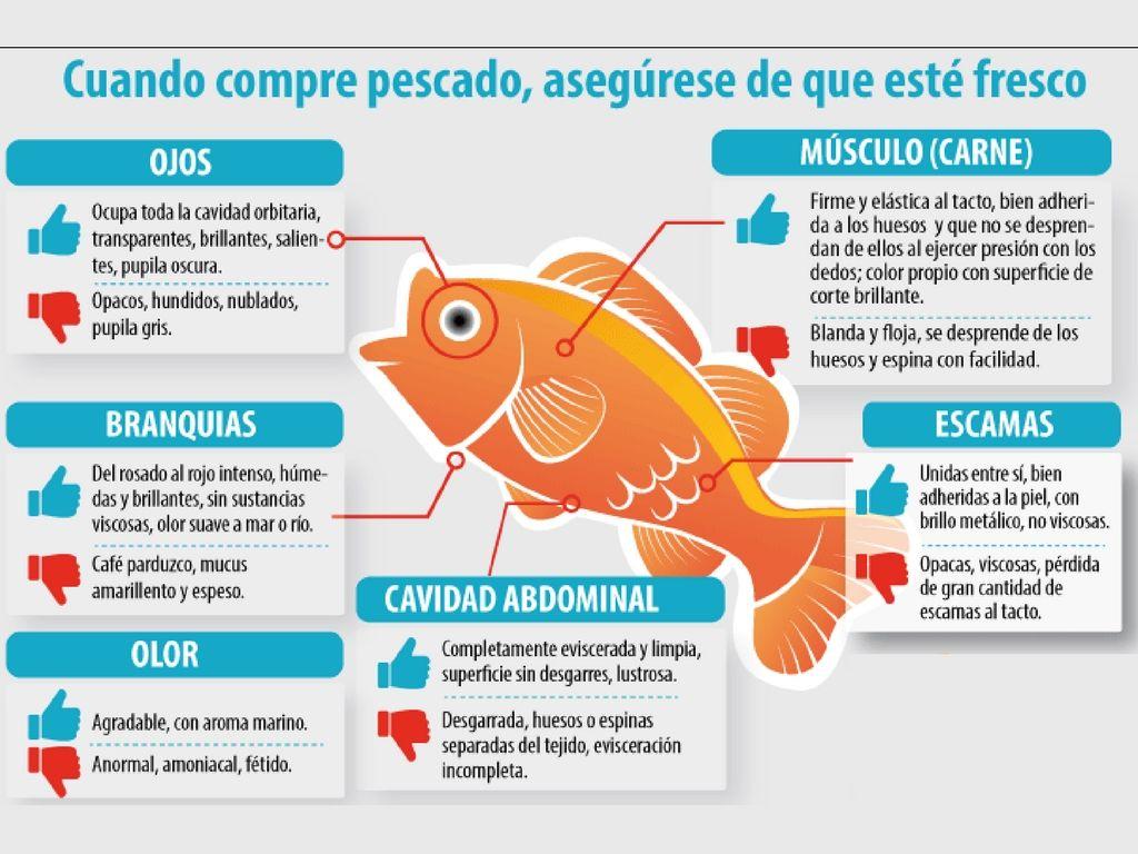 Tenga cuidado con el pescado que compra para Semana Santa