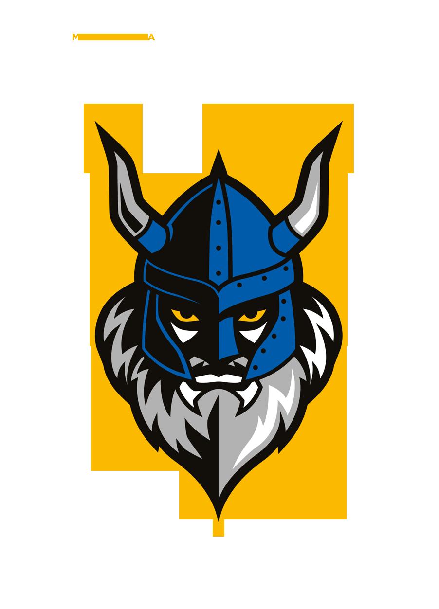 Commemorative logo and uniform design for Vikings ...