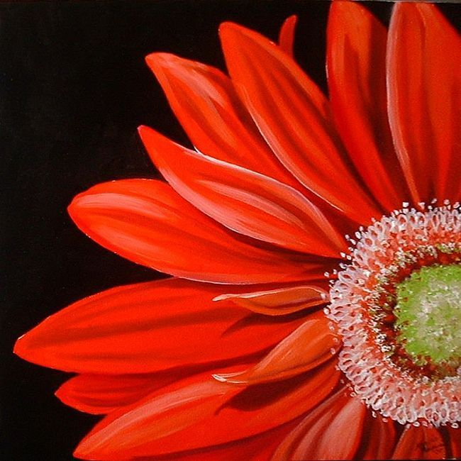 Red Gerbera Daisy Daisy Painting Acrylic Painting Flowers Black Canvas Paintings