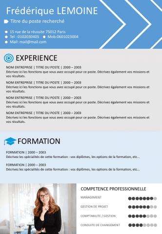 Cv Par Competences Exemple Cv Modele Cv Gratuit Modele De Cv Design