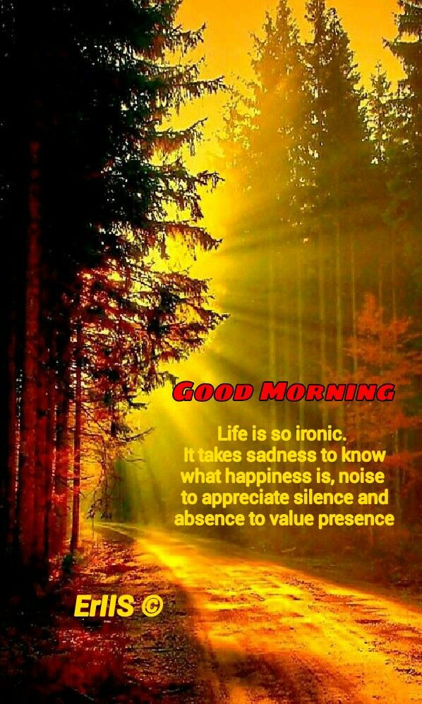 Good Morning quote Beautiful nature, Nature