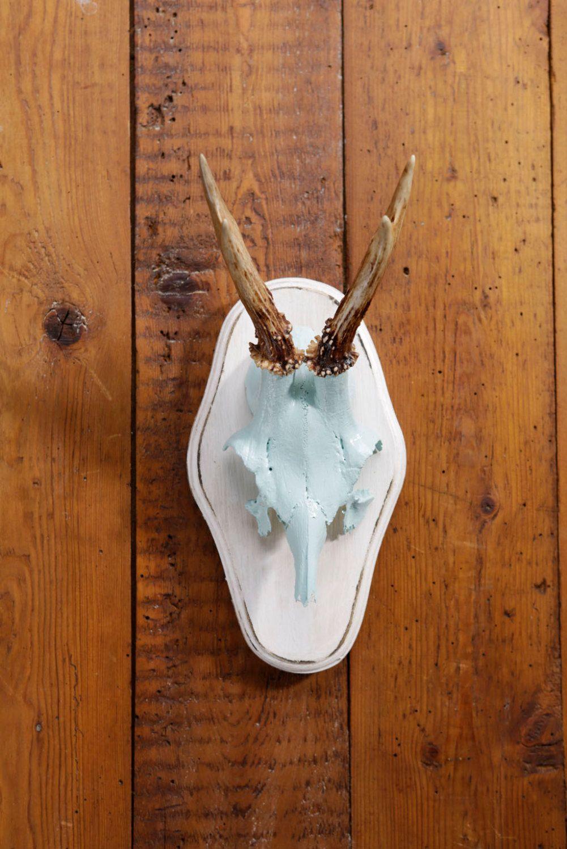 """Stylish wall sculpture, deer antler with scull, deer scull, deer mount, wall decoration, antler hook, antlers,  """"Gieselinde"""" von ZWDesign auf Etsy"""
