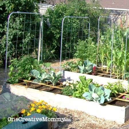 7+ Awesome DIY Garden Trellis Projects For Your Home | Trellis Ideas, Diy  Trellis And Gardens