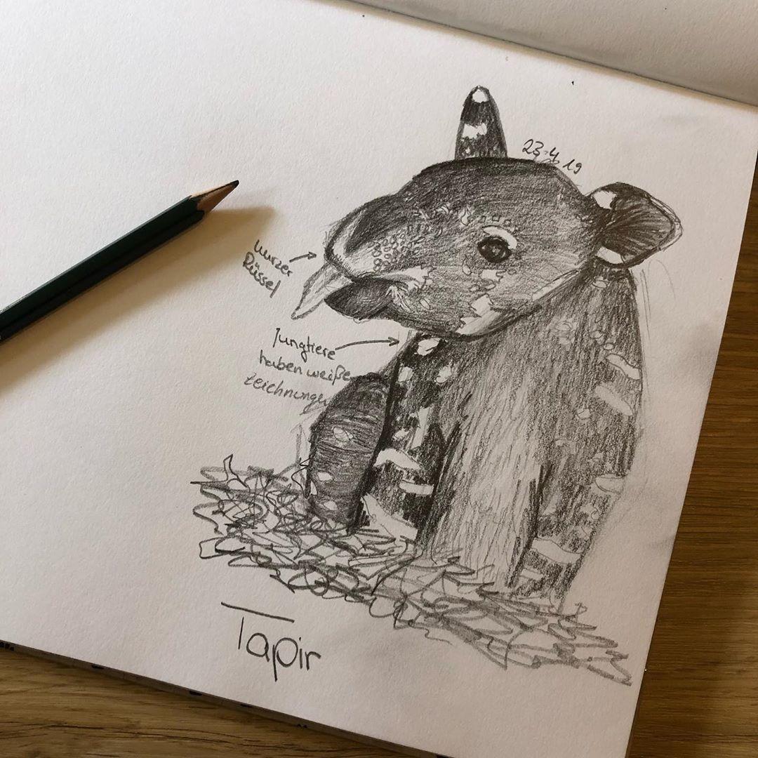 Desenho a Lápis E outra página do meu caderno de desenhos Desta vez uma sacolinha  Desenho a Lápis E outra página do meu caderno de desenhos D...