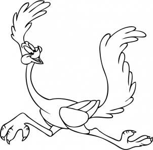 Drawing Road Runner Drawings Coloring Pictures
