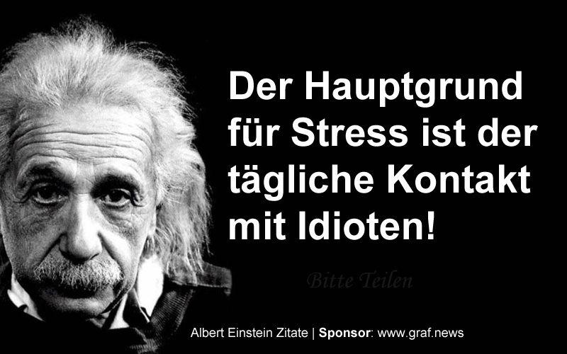 Monday Fun Quote Albert Einsteil Der Hauptgrund Fur Stress Ist Der Tagliche Kontakt Mit Idioten Spruche Einstein Einstein Zitate Albert Einstein Zitate