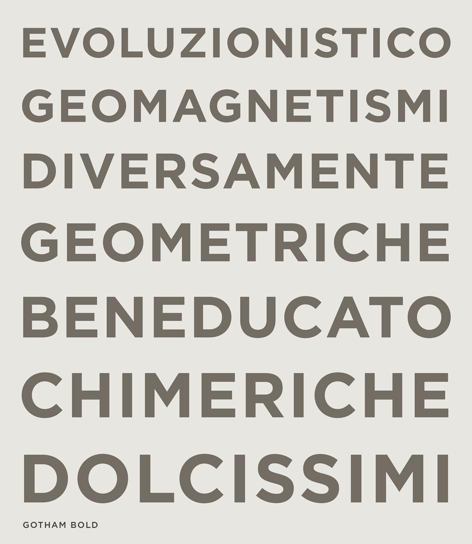 Gotham Font Features: Voice | Digital Type | Gotham font