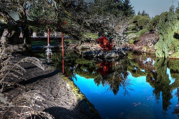 Point Defiance pond!