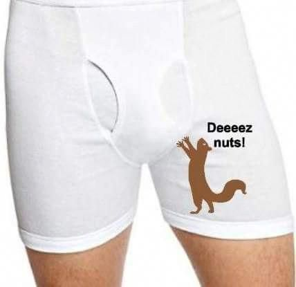 b981860e600 Custom Men s Boxer Briefs - Deez Nuts - Property of - Personalized  boxers  - Vinyl Boxers - Men s und