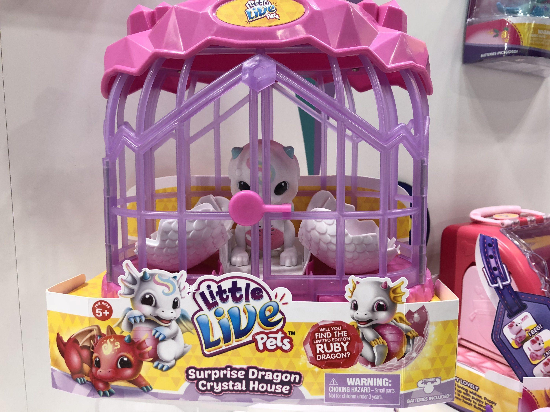 Little Live Pets Dragon Google Search 2020 Pet Dragon