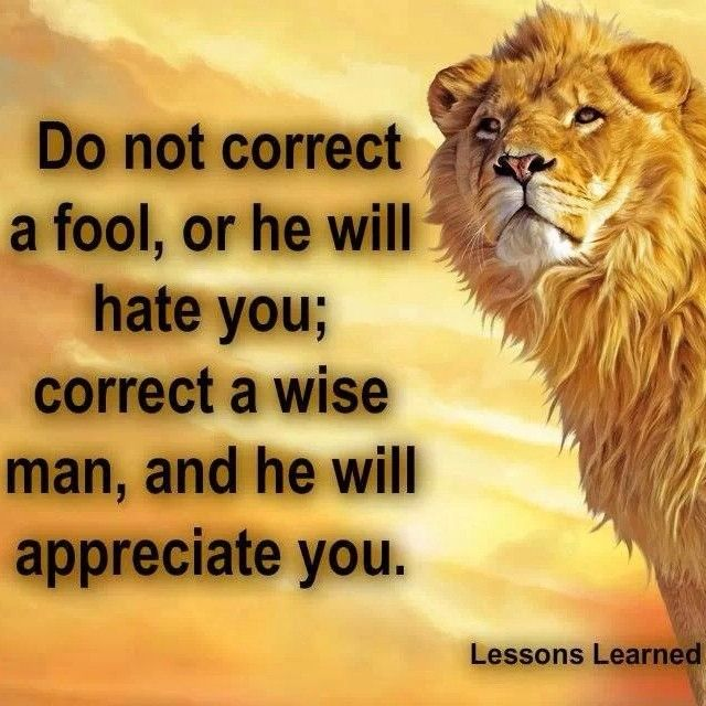 Image result for TEACH WISE MAN HE WILL FOOL""
