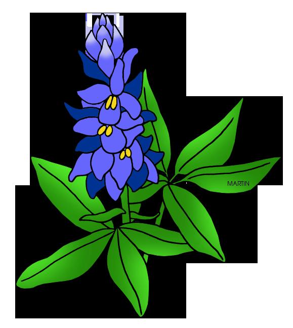 view thousands amazing images on weclipart com flowers to draw rh pinterest com Bluebonnet Flower Clip Art Bluebonnet Border