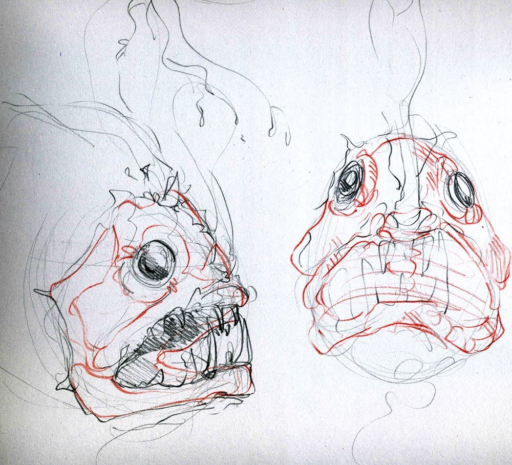 Angler fish anatomy