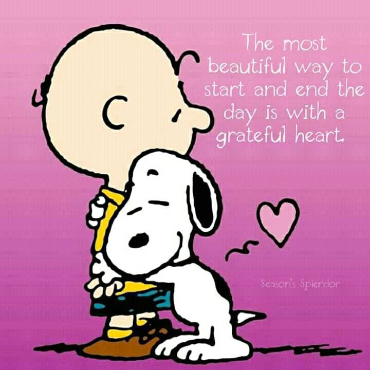 Pin by Anne on Snoopy | Snoopy quotes, Snoopy love, Charlie ...