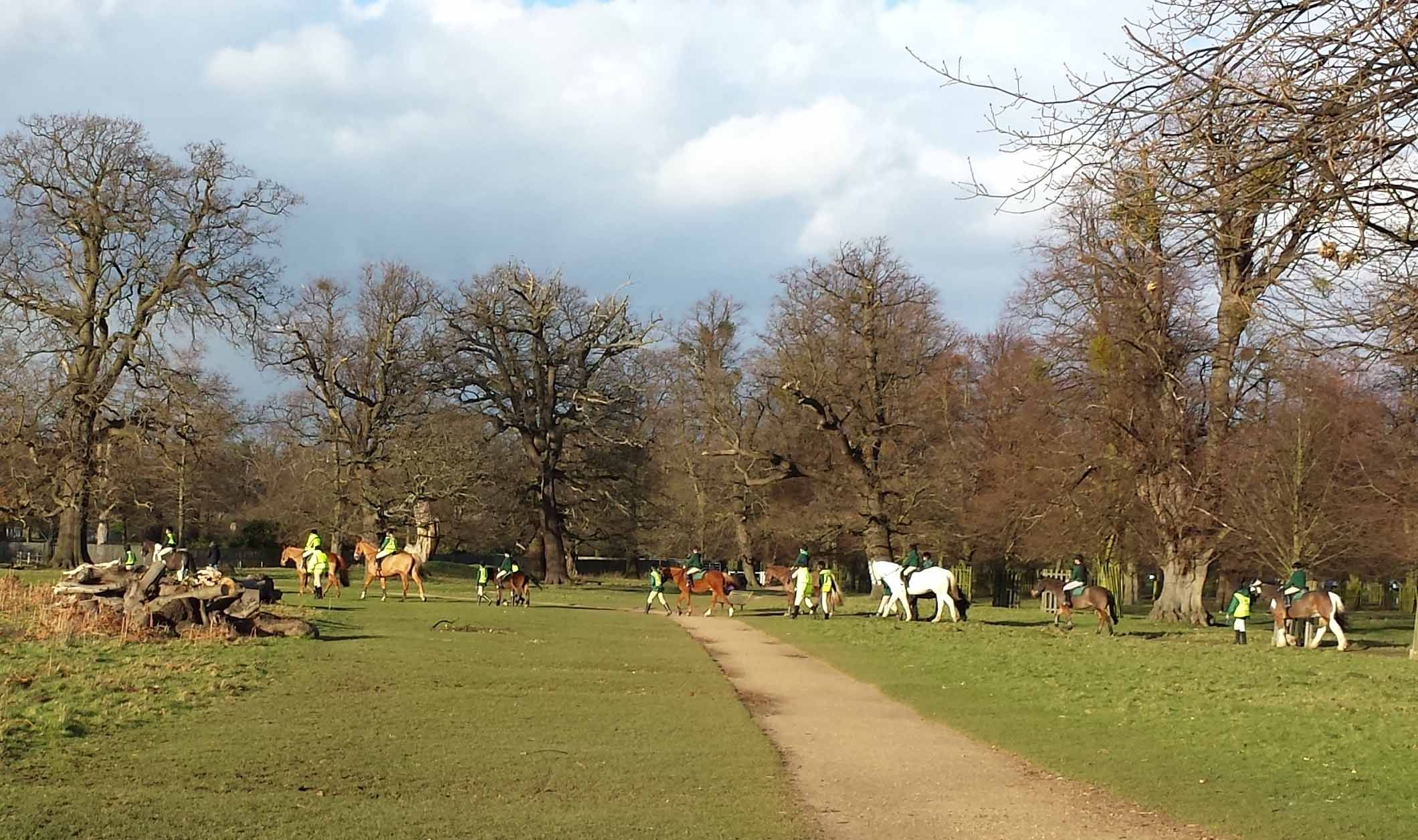 Hampton Court Horse Riding In Bushy Park London