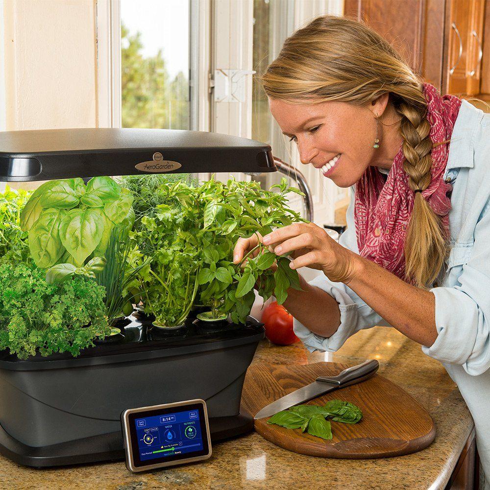 Amazon Com Aerogarden Bounty With Gourmet Herb Seed Pod 400 x 300