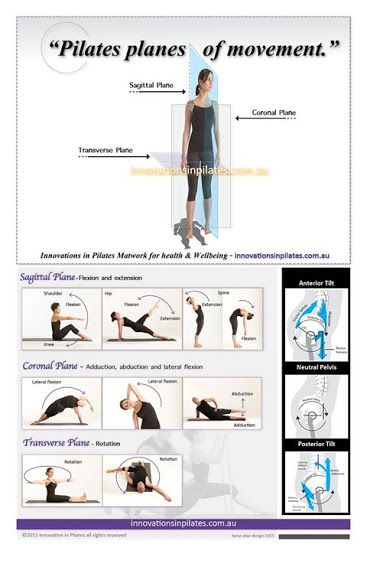 10+ Transverse plane of motion inspirations