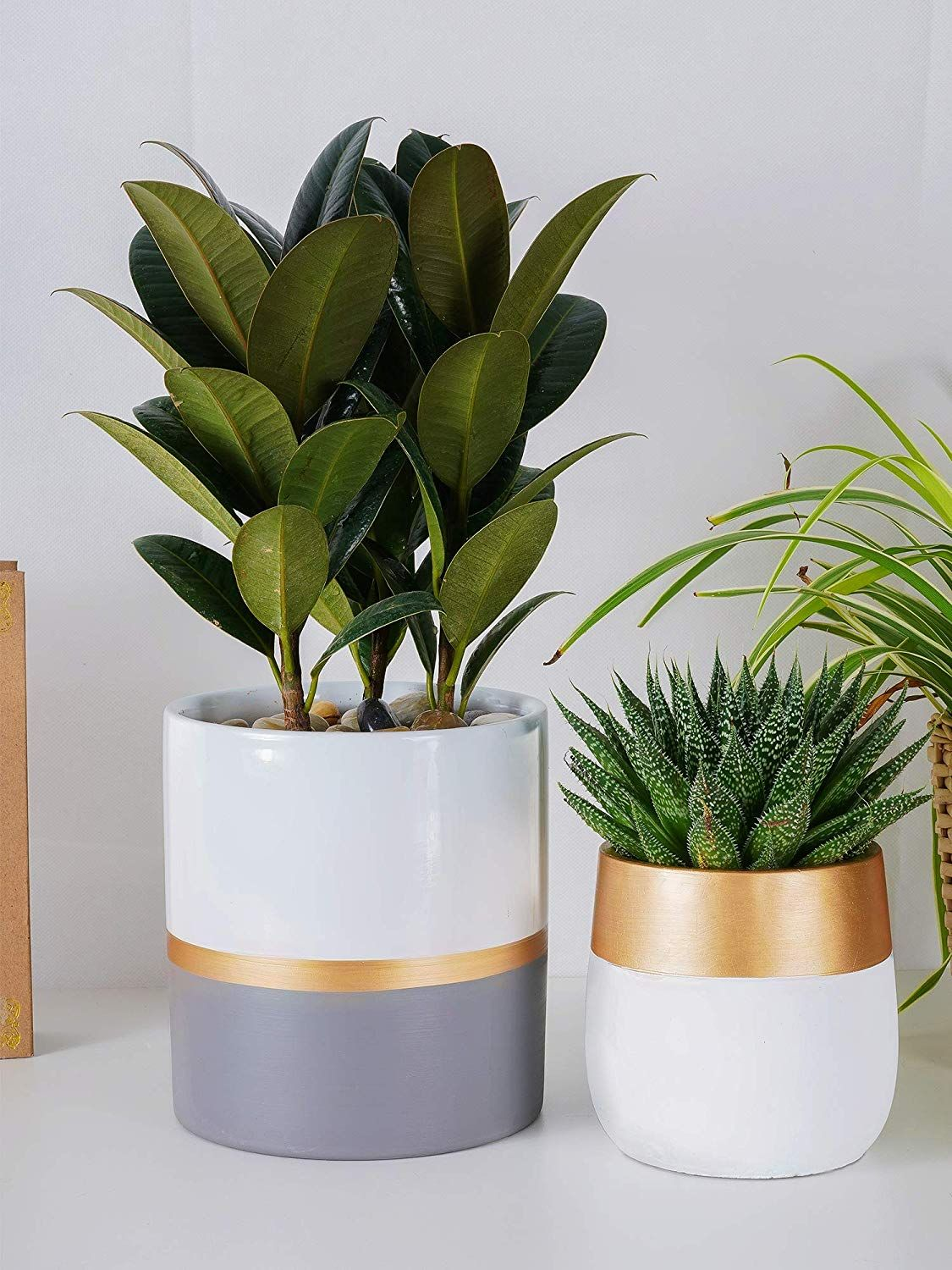 Ceramic Planter Pot For Indoor Plants Ceramic Planter Pots Plants Planter Pots