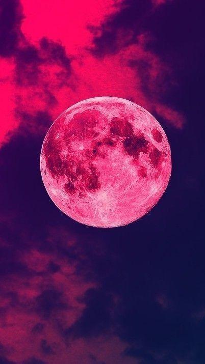 Saint moon omega Una nueva generación [Libro # 2]