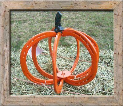 Horse Shoe Armadillo For Sale