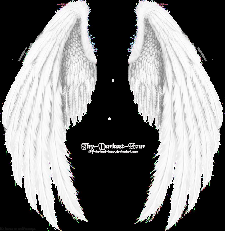 Winged Fantasy V.2 - White by thy-darkest-hour.deviantart ...