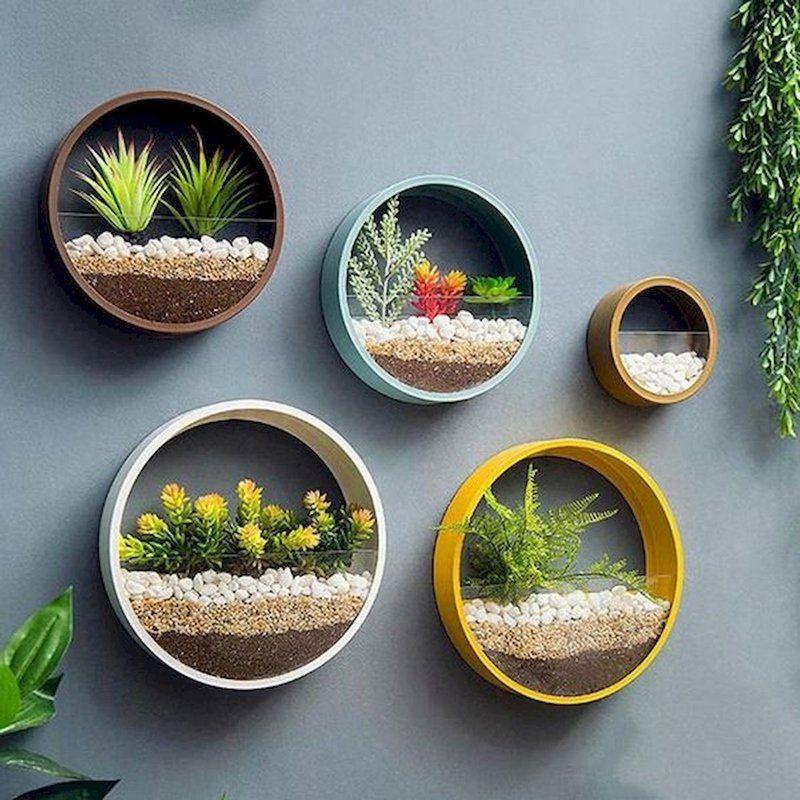 Un jardín dentro de casa realizado con 6 objetos reciclados
