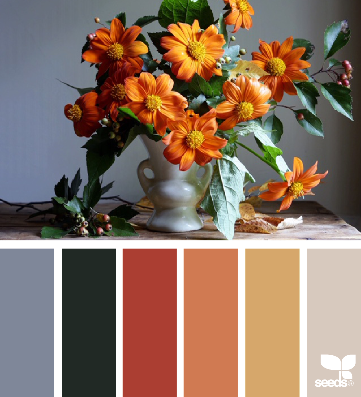 захоронения обязательно сочетания оранжевого цвета смотреть фото хранивший семейные фото