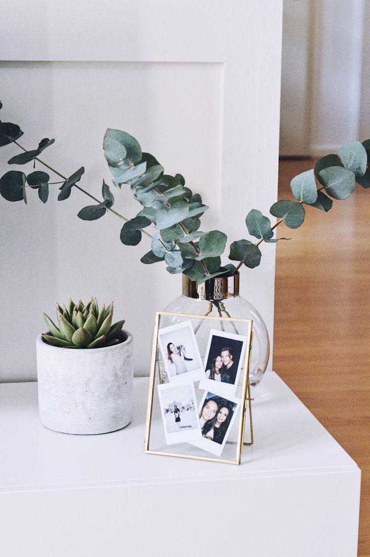 Photo of succulents & eucalyptus – home accessories
