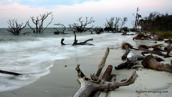 Hunting Island Sc Loved Coming Here While We Were Stationed In The Low Country