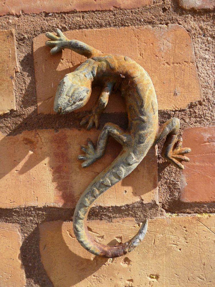 Solid Metal Gecko Lizard Garden Wall Ornament Wall Ornaments