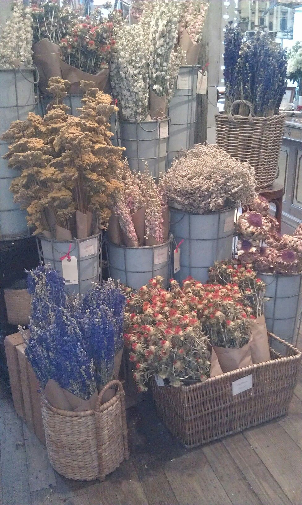 Dried Flowers Display My Shop Pinterest Display Flowers And