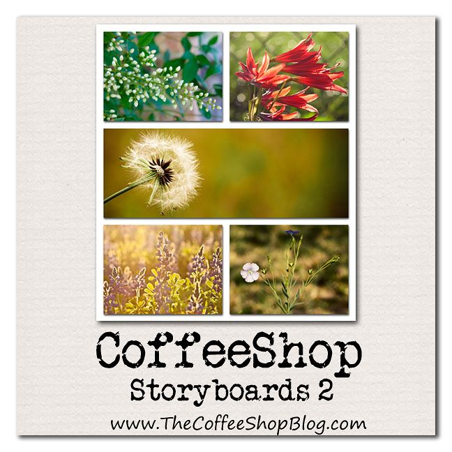 Free Storyboard Template Coffeeshop Storyboards   Notes