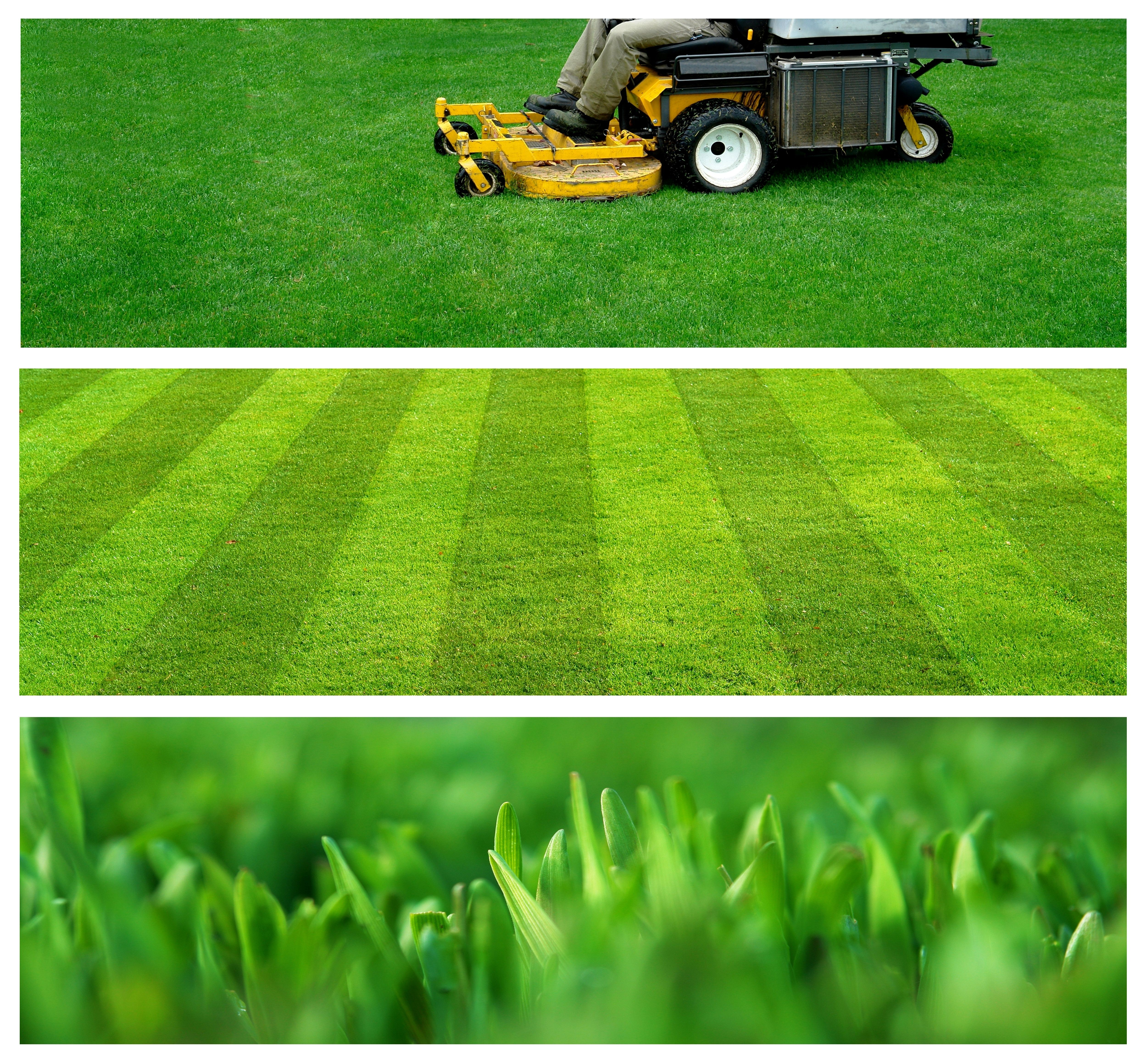 10 Tips for finding the perfect lawn mower this season! #lawncare