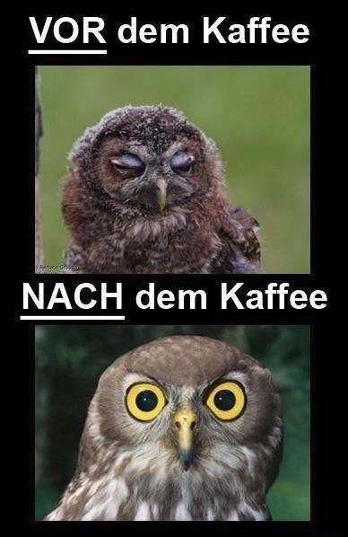 Vor dem Kaffee |Nach dem Kaffee - Fun Bild | Webfail - Fail Bilder und Fail Videos