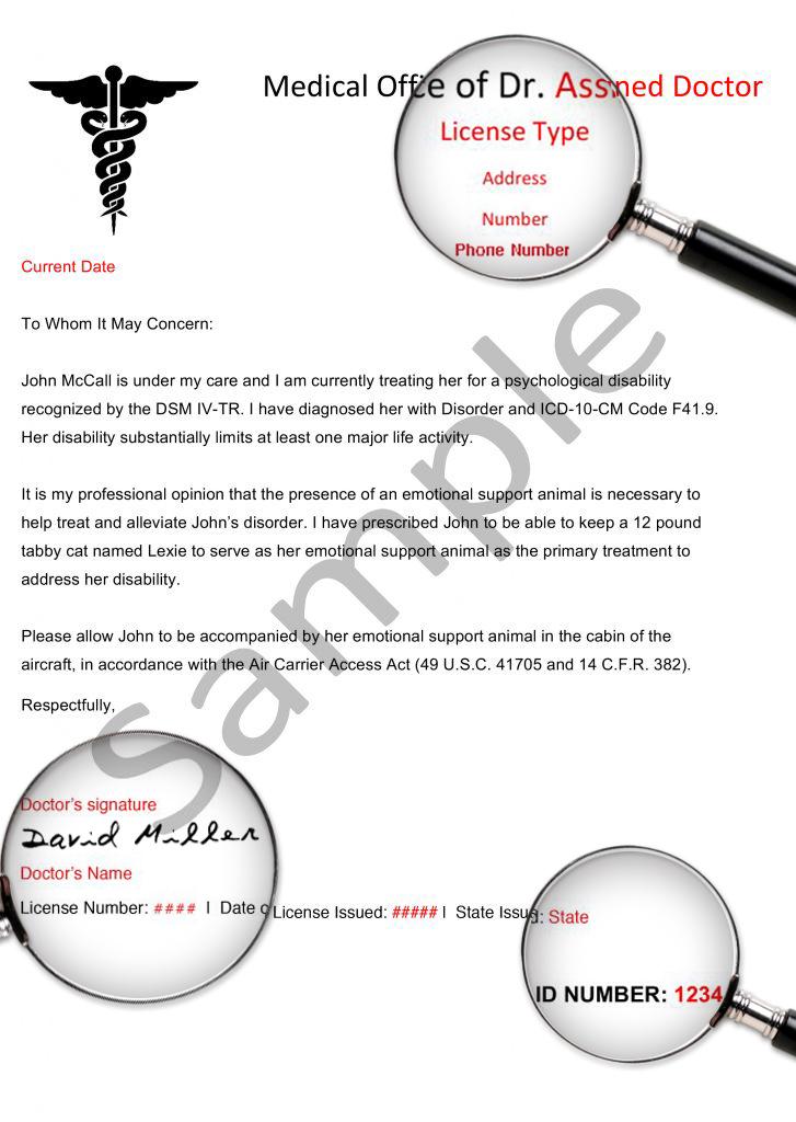 Sample ESA Letter Esa letter, Lettering, Emotional