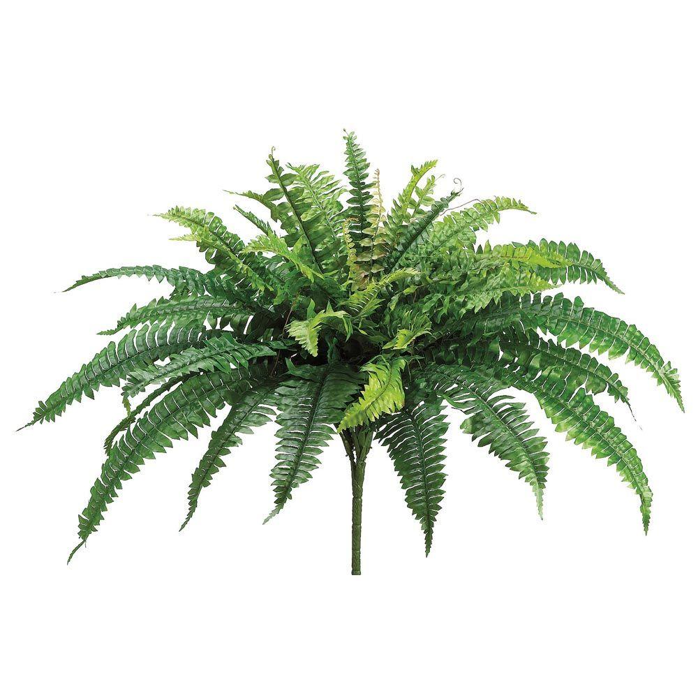 Silk boston fern bush in green23 boston ferns fern and greenery silk boston fern bush in green 23in tall mightylinksfo Choice Image