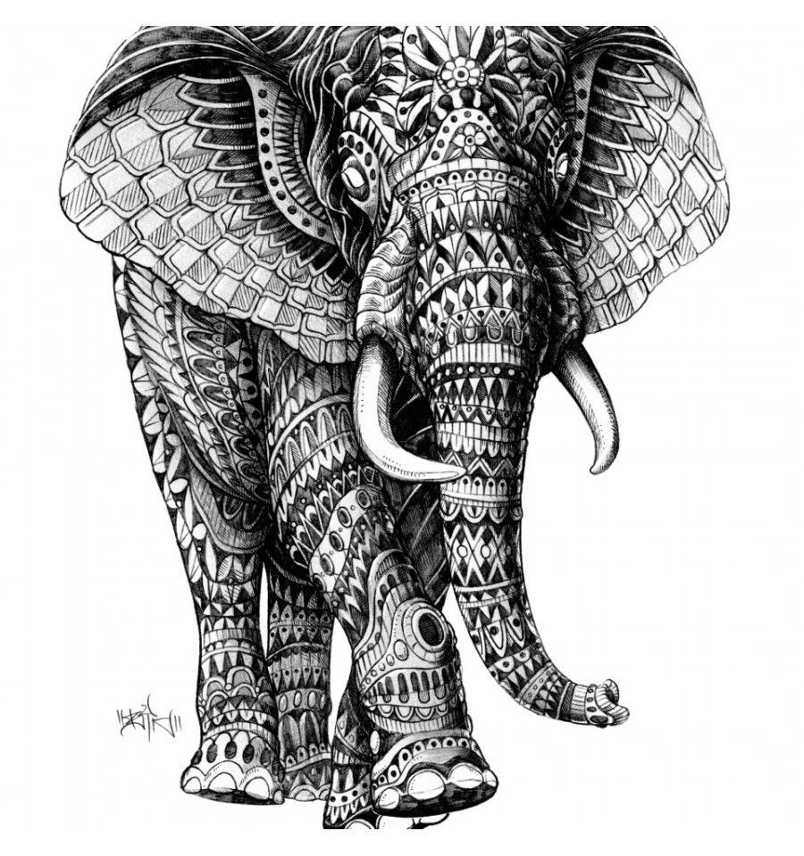Zentangle animals colors buscar con google zentangle ornate walking elephant wall sticker decal jungle art by bioworkz biocorpaavc Image collections