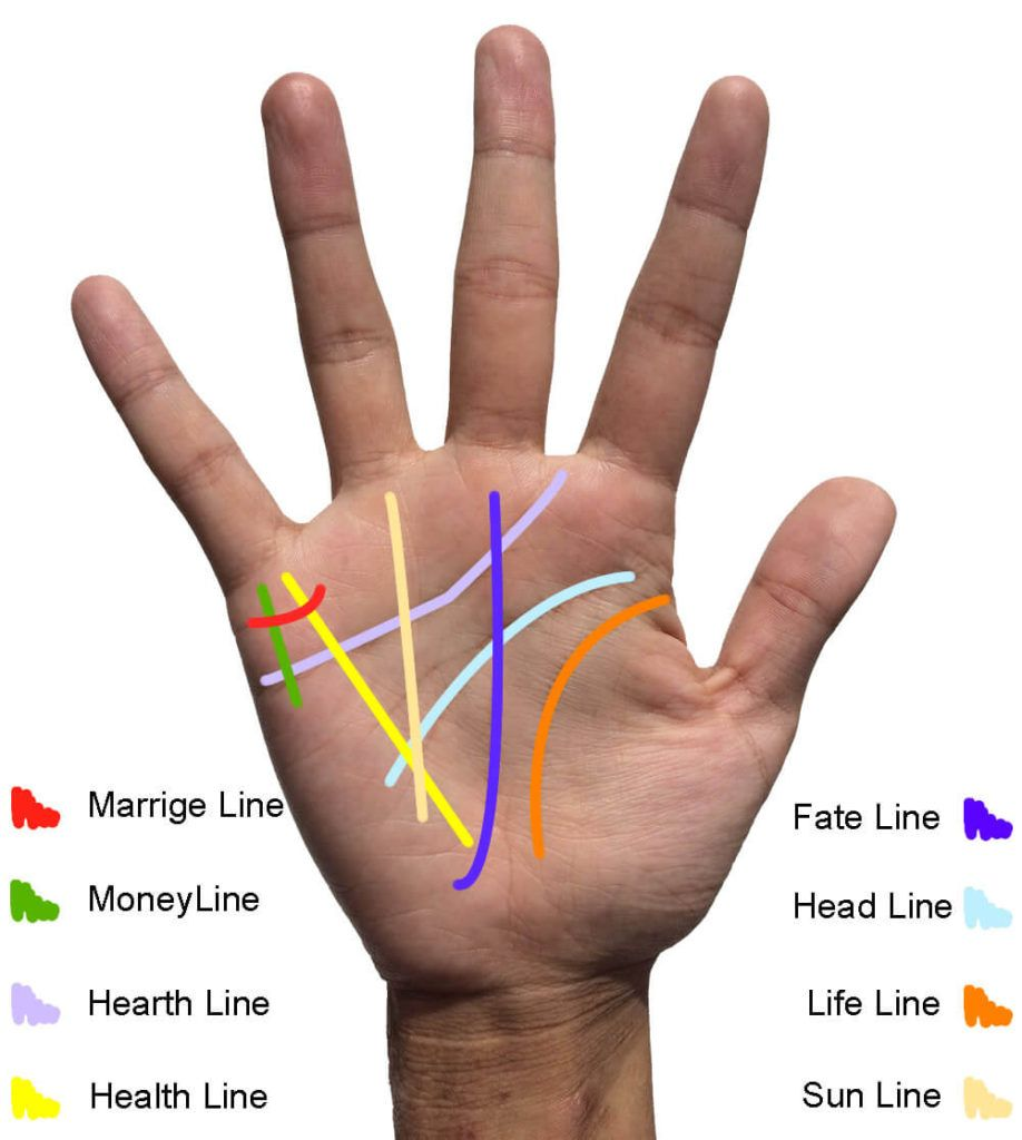 Palm Reading Guide Palm Reading Lines Palm Reading Palmistry Reading