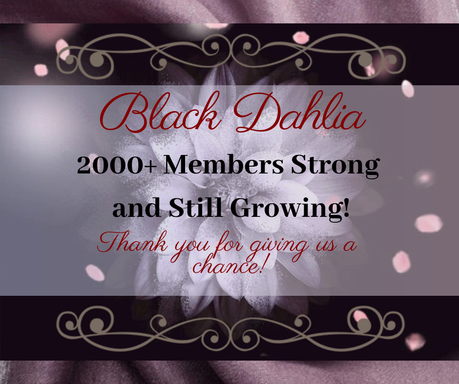 BlackDahlia is celebrating 2000+ members in our incredible inclusive community! Thanks to all our fantastic members for making this possible and here is to another 2000 more!  || #BlackDahliaRoleplaying #BDRP #Roleplay #RP #AdultRoleplay #Mature #WritingCommunity #Writing #Inspiration #Celebration #Welcome