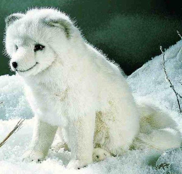 Kosen 3930 Arctic Fox, sitting