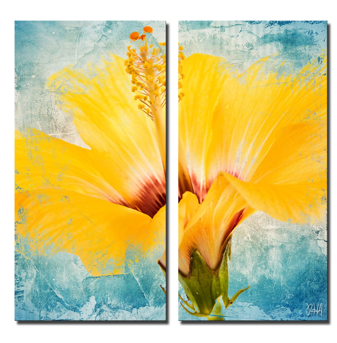 Painted Petals XVII\' by Ready2HangArt™ 2 Piece Painting Print on ...