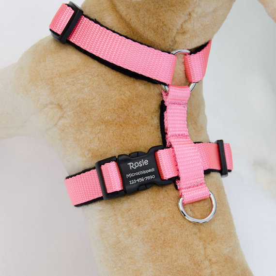 Adjustable Flannel Lined Dog Harness No Choke Personalized Pet