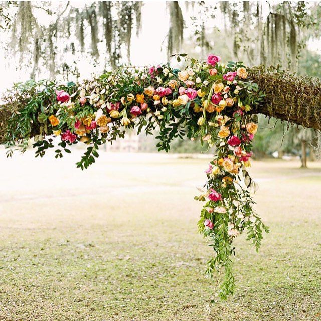 Flowers in a tree branch. #forageandfleur