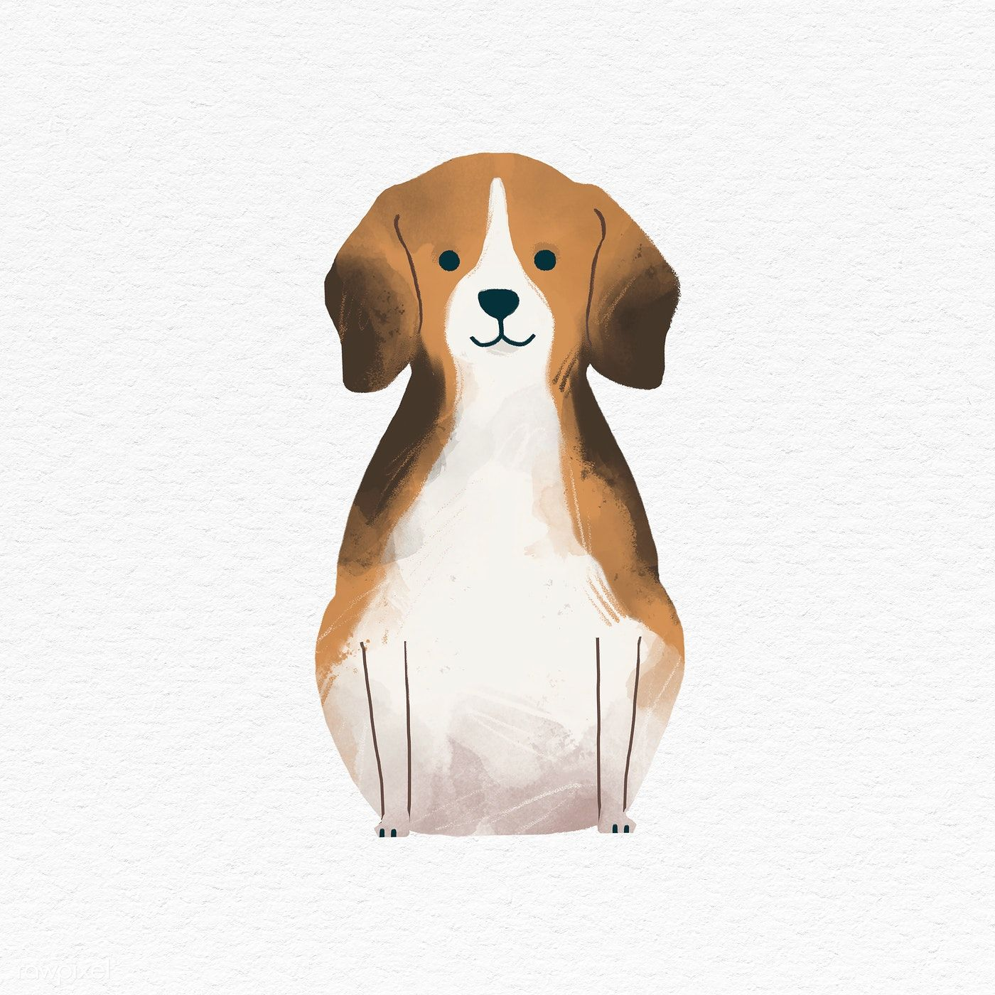 Download Premium Illustration Of Beagle On A White Background