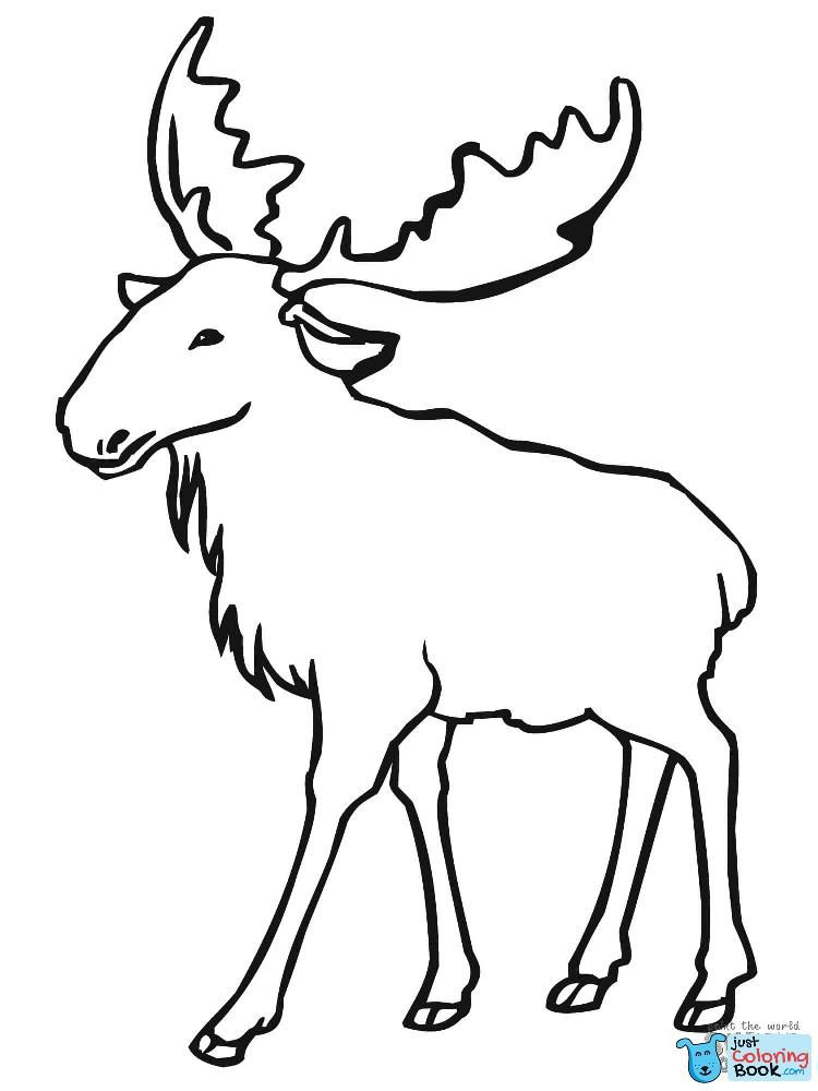 Moose Coloring Pages Eurasian Elk Moose Coloring Page Free With