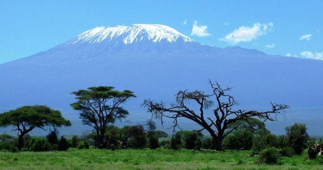 kilimanjaroamboseli  http://www.1-day-tours-in-kenya.com/kenya-day-tour-trips/amboseli-national-park-1-one-day-tour-trip.html