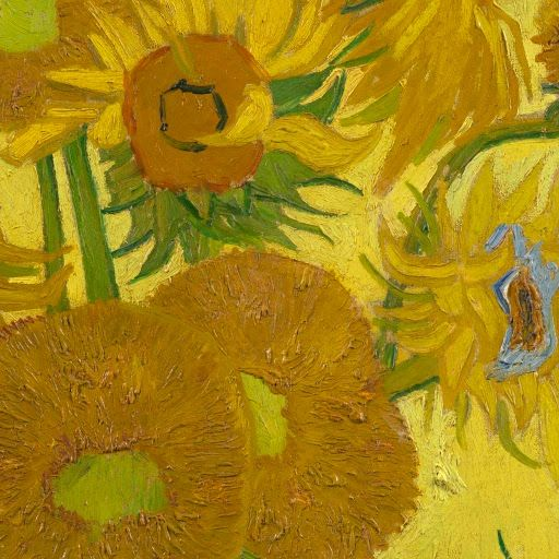 Sunflowers Vincent Van Gogh 1889 Museum