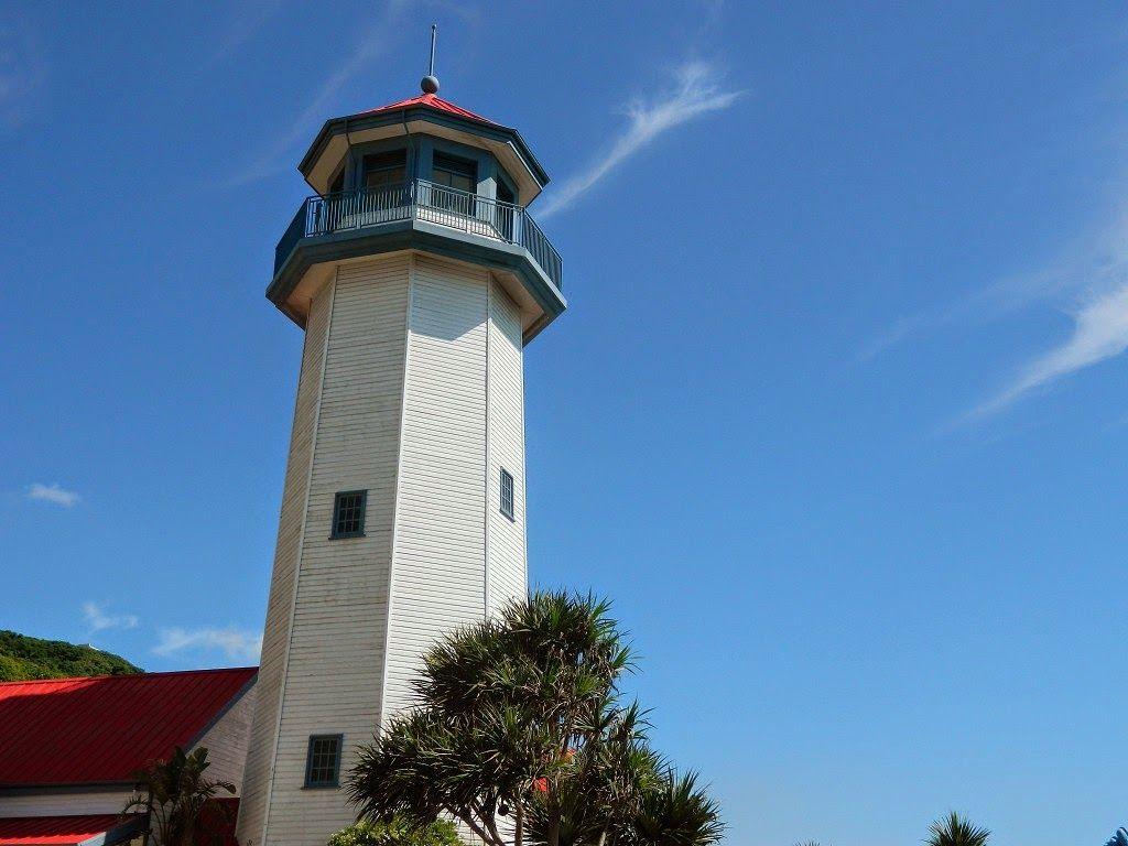 舊愛花蓮-親子教育生態慢遊: 2014暑假海洋公園年度招待秀